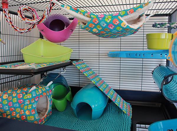 Une cage parfaite pour ses rats